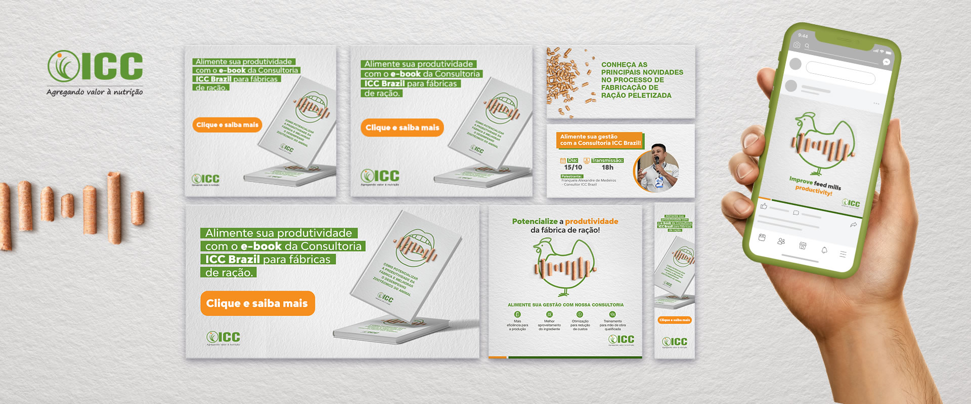 Gestão de marketing digital para um serviço da ICC Brazil.